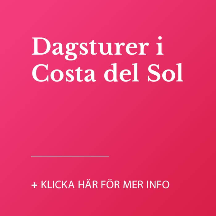Dagsturer i Costa  del Sol